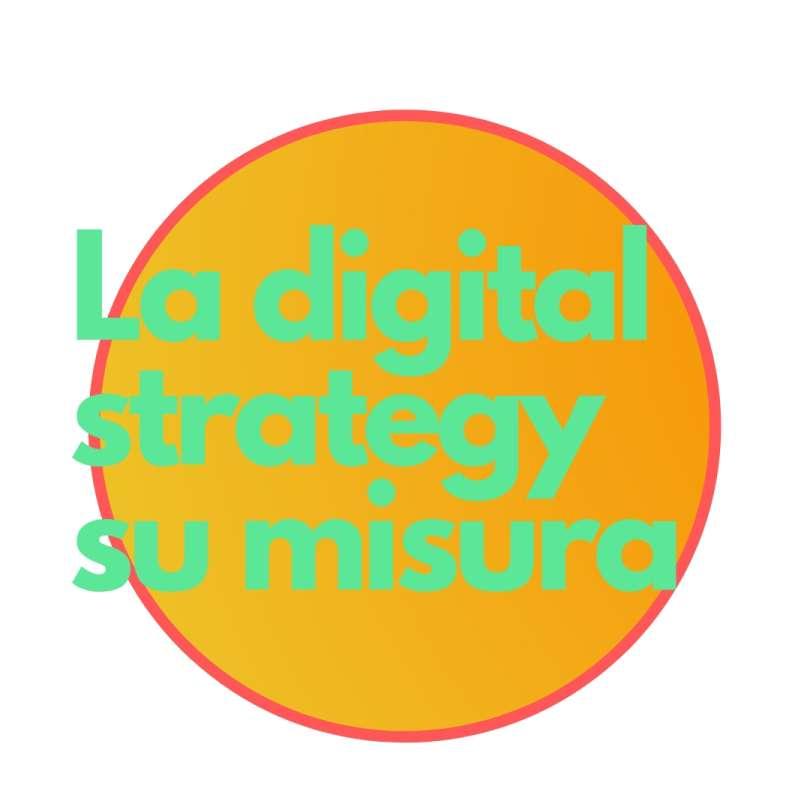 Conte Federico la digital strategy su misura